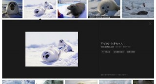 GoogleがPC向け画像検索ページをデザイン刷新、パラパラめくる感覚