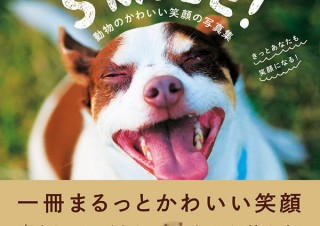 40種以上の癒される動物を掲載「SMILE! 動物のかわいい笑顔の写真集 きっとあなたも笑顔になる!」