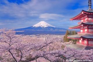 日本を象徴する建物や景色を3つ以上同時撮影できる「奇跡のトリプルショット」