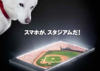 ヤフー、月額500円で野球やサッカーなどスポーツ見放題の「スポナビライブ」開始