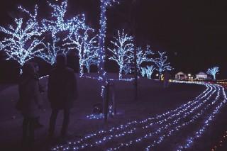 参加型の企画も用意された滋賀県8会場でのイベント「びわ湖灯り絵巻〜虹色イルミネーション〜」