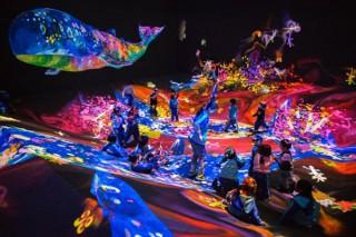 """沖縄県立博物館・美術館で""""共同的で創造的な人間になること""""をテーマにしたチームラボの作品展示"""