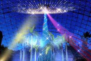 フラワーパークで光の演出を楽しめる「フラワーイルミネーション in とっとり花回廊」