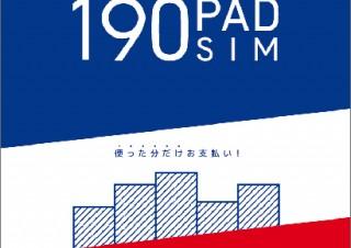 日本通信、ソフトバンクのSIMロックiPadにも使える月額190円のSIMサービスを提供開始