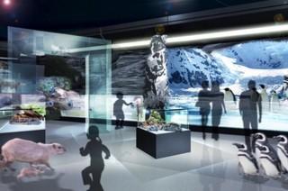 DMM、海の生き物と最新映像技術を融合させた「DMM かりゆし水族館(仮称)」発表