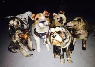 犬の立体コラージュの展示を中心とした時吉あきな氏の個展「ナンバーワン」