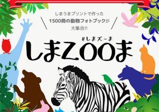 しまうまプリントシステムによる展示イベント「みんなでつくるフォトブック動物園」