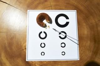 磯貝陽一氏と小杉幸一氏による「ドーナッツをランチョンマットに置きたくなる展」