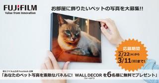 写真を送ると部屋に飾れるパネルにしてもらえる可能性がある富士フイルムのキャンペーンが実施中