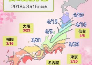 桜の開花予測はAIにお任せ、ビッグデータ活用で全国630地点を予測。東京満開は3/28