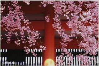 キヤノンフォトコレクションから林忠彦氏の作品を紹介する写真展「東海道」