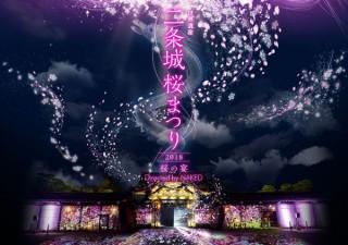 プロジェクションマッピングだけでなく光や音の演出も加わった「二条城桜まつり2018」