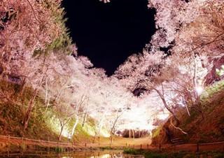 桜とハートをイメージさせる写真をInstagramで募集中の「SAKURAジェニック」キャンペーン