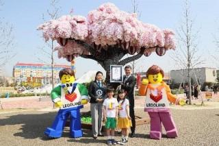 LEGOLAND Japan、「レゴブロックで作られた最大の桜の木」のギネス世界記録認定を発表