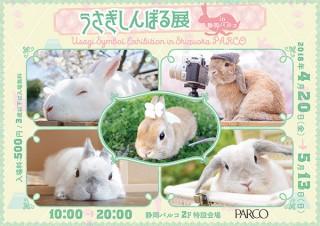 SNSでも人気のウサギたちの写真や物販を楽しめる「うさぎしんぼる展」の春の巡回展がスタート