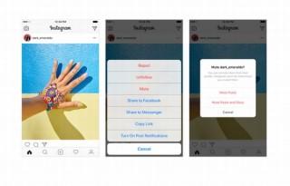 Instagram、特定のフォローを外すこと無く投稿を非表示にできる「ミュート」実装