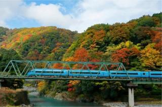 小田急電鉄が2019年のカレンダーに掲載する「季節を旅するロマンスカー」の写真を募集