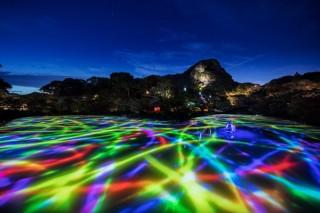 50万平米の大庭園がデジタルアート空間になる「チームラボ かみさまがすまう森」