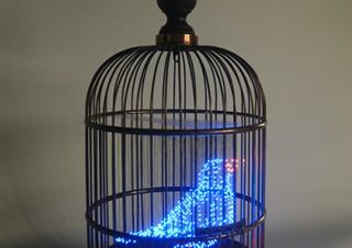鳥をテーマにデジタル技術を駆使した体験型の多彩な作品を楽しめる「バーチャルバードパーク」