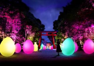 京都の世界文化遺産を舞台にチームラボのデジタルアートを楽しめる「下鴨神社 糺の森の光の祭」