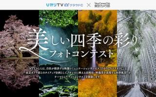 大画面TVでの表示に映える風景写真を募るNTTぷららの「美しい四季の彩りフォトコンテスト」