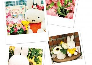ミッフィーと花を一緒に撮影した写真を募集している「ミッフィーとお花のフォトコンテスト」