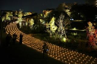 さまざまなデザインの灯りやコラボアートを散策しながら楽しめる「第15回草津街あかり」