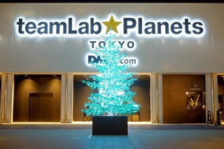 「チームラボ プラネッツ TOKYO DMM.com」が水中の光をイメージしたツリーを展示