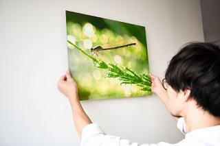 デジカメで撮影した画像を銀写真プリントで出力する富士フイルムの「プレミアムプリントサービス」