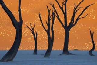 インテリアとしても映える作品が選ばれたナショナル ジオグラフィック写真展「地球の物語」