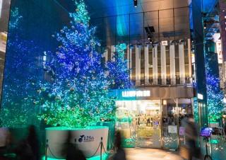銀座の山野楽器本店がツリーの設置と合わせた「Instagram クリスマスツリー投稿キャンペーン」を実施