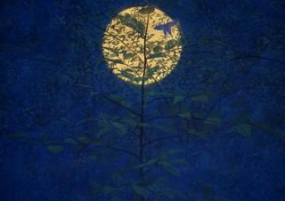 "3D音響も用いて""時空を超えた癒し""が表現される日本画家の福王寺一彦氏の個展「Starry in the moon」"
