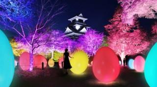 高知城がインタラクティブな光のアート空間に変わる「チームラボ 高知城 光の祭」
