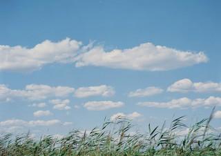 第25回木村伊兵衛写真賞の受賞作家の鈴木理策氏による写真展「知覚の感光板」