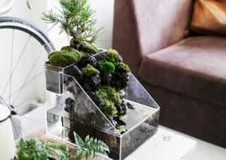 デスクに一つ盆栽を、水の流れる盆栽キット「盆水」がCAMPFIREに出品