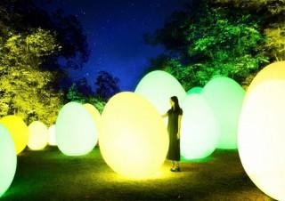 宮沢湖と湖畔の森がインタラクティブな光のアート空間になった「チームラボ 森と湖の光の祭」
