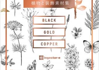 黒・金・銅の3色で彩る華麗な植物イラスト集「BOTANY 植物と装飾素材集」発売