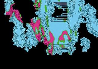 """抽象絵画の自動生成ロボット""""画家エミュレーター""""を制作した森浩一郎氏の初個展「enum」"""