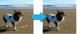 ソースネクスト、なぞると写真の一部が自然に消えるソフト「フォト消しゴム 4」発売