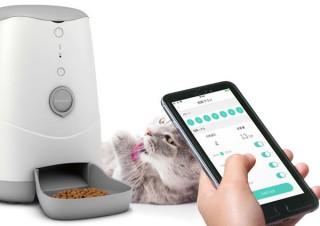 ジーフォース、スマホでペットの食事管理を行えるスマート自動給餌器を発売