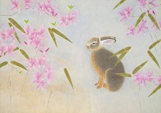 上村松篁氏と上村淳之氏の親子による約50点の作品を展示している「花鳥画の世界」