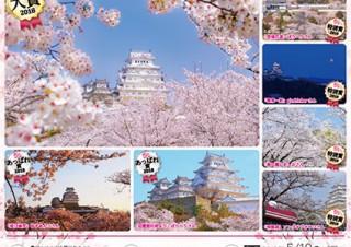 春を感じさせるような世界遺産の姫路城の写真を募集している「姫路城の春 2019」