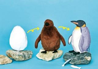 フェリシモ、卵・ヒナ・成鳥と3変化するオウサマペンギンぬいぐるみ発売