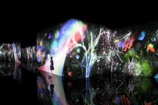 姫路市制130周年などを記念して姫路市立美術館でチームラボの作品展示がスタート
