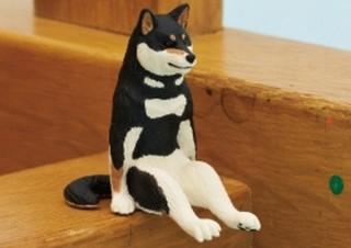 """キタンクラブの""""座るシリーズ""""第2弾は「座る犬」!特に赤・黒・ごまの柴犬の可愛さ爆発"""