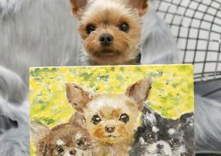 動物をモチーフにした約400点のハンドメイド作品を販売する「かわいい動物あつめました。」