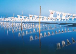 応募作品が今治市内の海岸に展示される「海洋プラスチックTシャツデザインコンテスト」