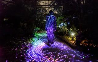 チームラボの光のアートによる演出を楽しめる「世界を旅する植物館 水の道 光の道」