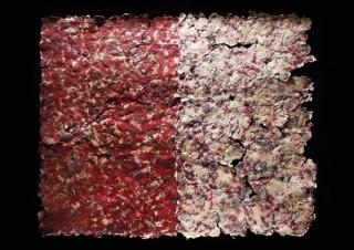 紙漉きの手法で植物繊維を利用した作品を制作する半澤友美氏の展覧会「The Histories of the Self」