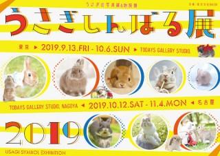 可愛いウサギの作品が集まる合同写真展&物販展「うさぎしんぼる展 2019」